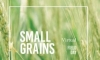 2020 Small Grains Management Virtual Field Day
