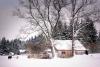 Optimizing Winter Shelter for Small Ruminants