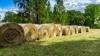Beginner Hay and Pasture School
