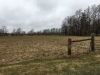 Pasture & Farm Walk