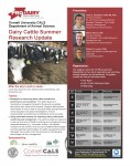 Dairy Cattle Summer Research Update