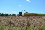 Assistant Crop Specialist