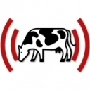 Coming Soon: New Podcast from CCE Dairy Educators and PRO-DAIRY