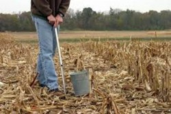 Soil Sampling for Field Crops