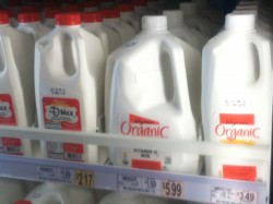 Looking at Milk From a Different Angle
