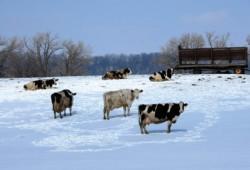 Winterizing Your Grazing Facilities