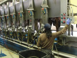 Produce Quality Milk to Boost Your Bottom Line