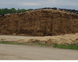 Pricing Corn Silage - Fall 2016