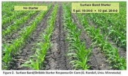 Pop-Up and Starter Fertilizers in Corn and Soybeans