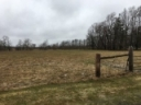 Stockpiling Pastures